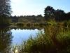 Dolní rybník s kamenným stolem a udírnou