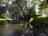 Řeka Moravská Dyje u chalupy