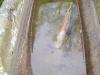Úlovky z Dolního rybníka (Štika,okoun)