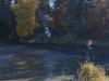 Výlov Dolního rybníka – 31.10.2015