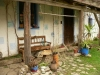 Vchod -ubytování ve dvoře