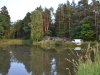 Rybaření na Dolním Modletickým rybníku.